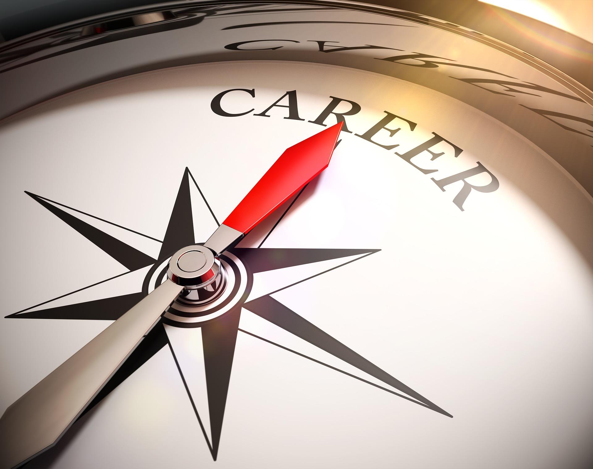 Career coaching compass